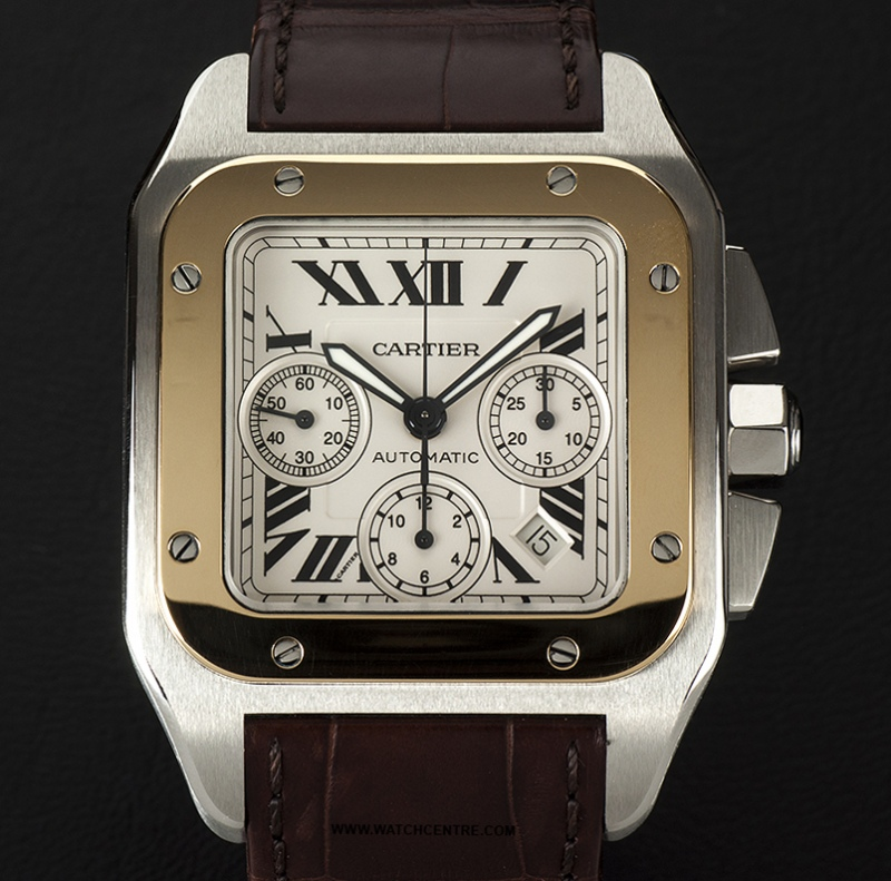 W20126X8 Cartier Santos 100 Womens Watch Review