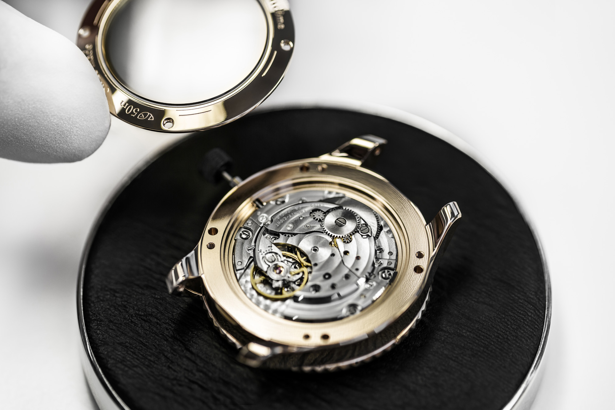 Dior VIII Grand Bal Plisse Soleil - Movement