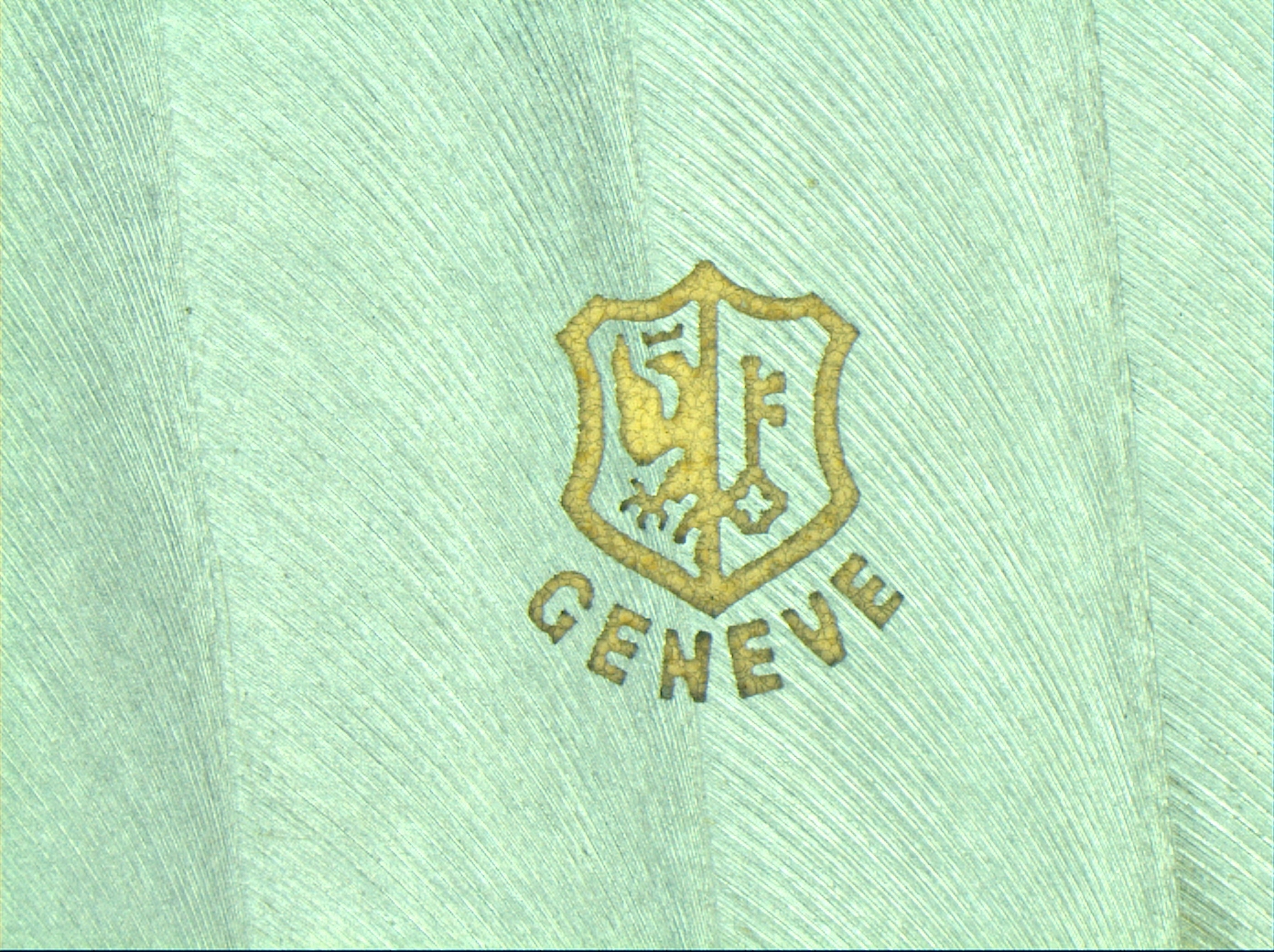 The New Geneva Seal